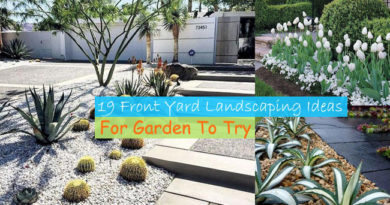 19 Front Yard Landscaping Ideas For Garden To Try