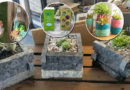 Surprising Items You Can Repurpose into Succulent Planters