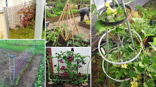 12 DIY Recycled Garden Trellis Ideas