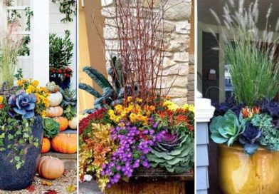 28 Coolest Ideas to Create Fall Planters Outside Front Door