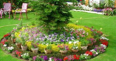 Best 22 Flower Bed Ideas to Brighten Your Outdoors
