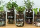 How To Grow Your Own Mason Jar Herb Garden