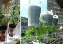 15 Ways You Can Create Your Own Self Watering Planters