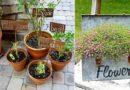 27 DIY Garden Signs With Unique Style