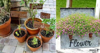 27 DIY Garden Signs With Unique Style