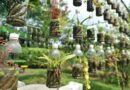 19 DIY Recycled Plastic Bottle Gardens You Would Love